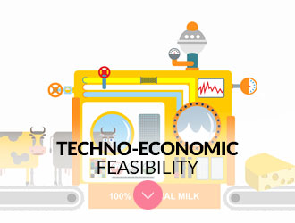 Techno-Economic Feasibility