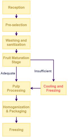 Fruit Pulp Production