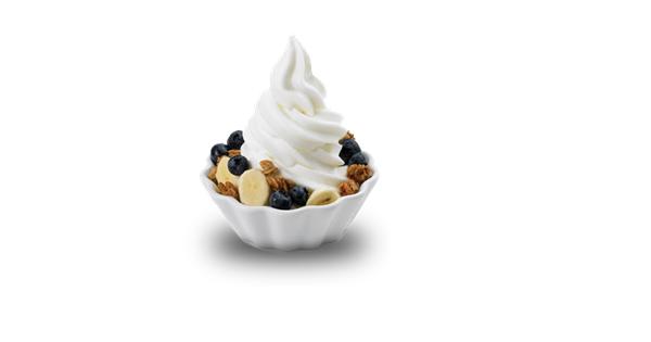 Flavoured Yogurt Processing