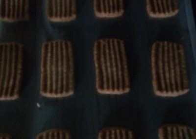 biscuit industry 2